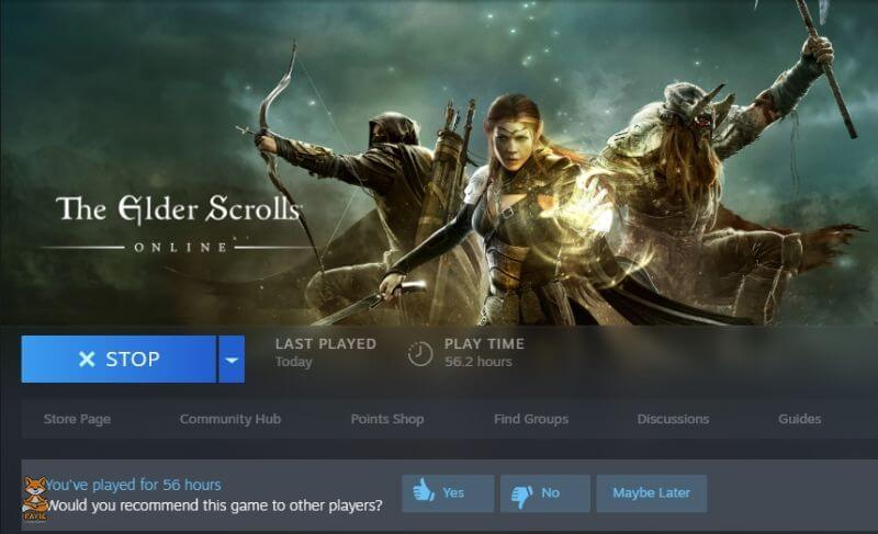 ESO Steam Gameplay Time Stats